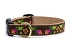 Up Country Chocolate Floral Dog Collar