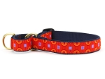 Up Country Greenwich Martingale Dog Collar