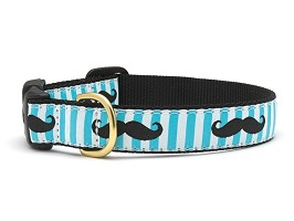 Up Country Mustache Dog Collar