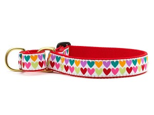 Up Country Pop Hearts Martingale Dog Collar