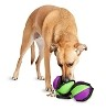 PetSafe rip 'n tug Barbell Interactive Dog Toy