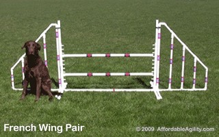 Wing Pair - French Style (Jump Not Included)