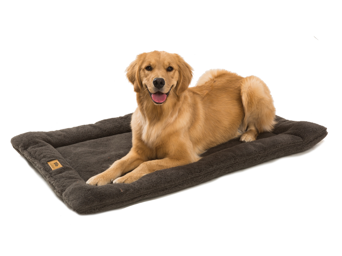 Paw Beds For Dogs