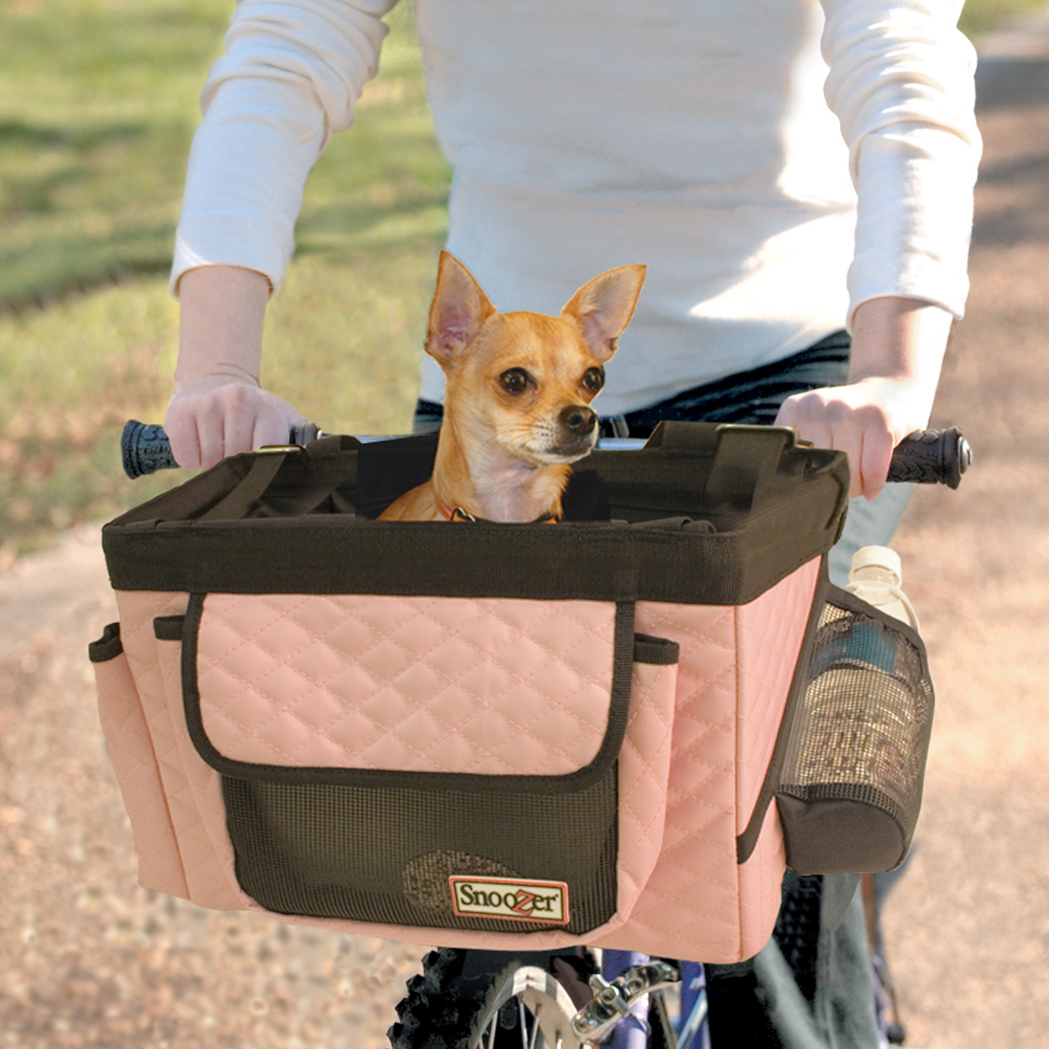 Take Your Dog On a Bike Ride!