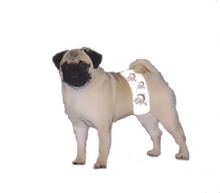 Wiki Wags Brand Disposable Male Dog Wraps