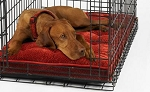 Bowsers Luxury Dog Crate Mattress