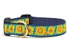 Up Country Bright Sunflowers Dog Collar