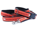 Teddy the Dog Dirty Dogs Have More Fun Collar or Martingale