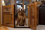 Dynamic Accents Highlander Walk-Through Dog Gate