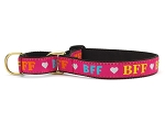 Up Country Best Friends Forever Martingale Collar