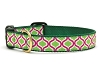 Up Country Green Kismet Dog Collar