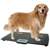 Redmon Large Pet Digital Scale