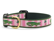 Up Country Alligator Dog Collar