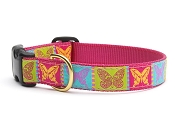 Up Country Butterfly Dog Collar