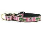 Up Country Alligator Martingale Dog Collar