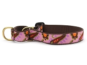 Up Country Lush Paisley Martingale Collar