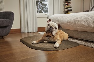 Wellness PetMats Rounded