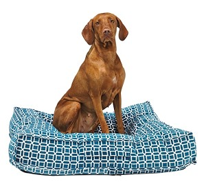 Bowsers Piazza Luxury Square Dog Beds