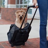 Snoozer Roll Around Travel 4-in-1 Dog Carrier Backpack