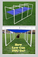 Dog Agility Crawl Tunnel