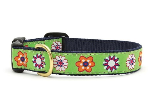 Up Country Bloom Dog Collar