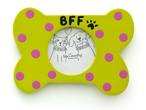BFF Bone Frame Magnet Orange or Green