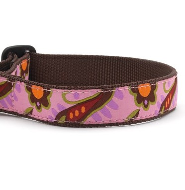 Up Country Lush Paisley Dog Collar