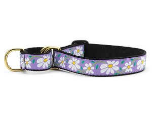 Up Country Daisy Martingale Dog Collar