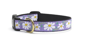 Up Country Daisy Dog Collar