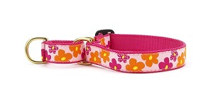 Up Country Flower Power Martingale Dog Collar