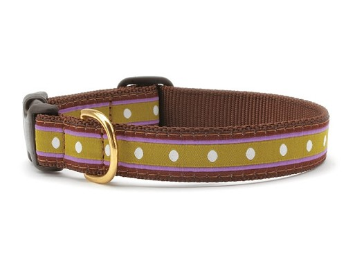 Up Country Dotty Stripe Dog Collar